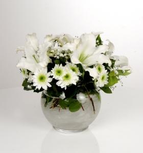 Akvaryum Cam Vazoda Beyaz Bahar Çiçekleri